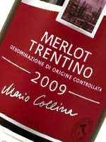 Der Merlot gilt als früh reifende Sorte und bringt gleichmäßig hohe Erträge