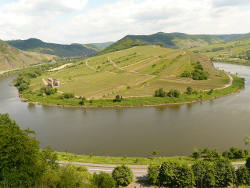 mosel moselschleife