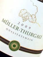 Der Müller Thurgau ist vom Charakter aromatisch frisch